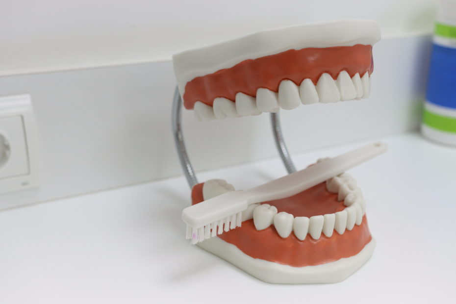 articulador dentista ident tona