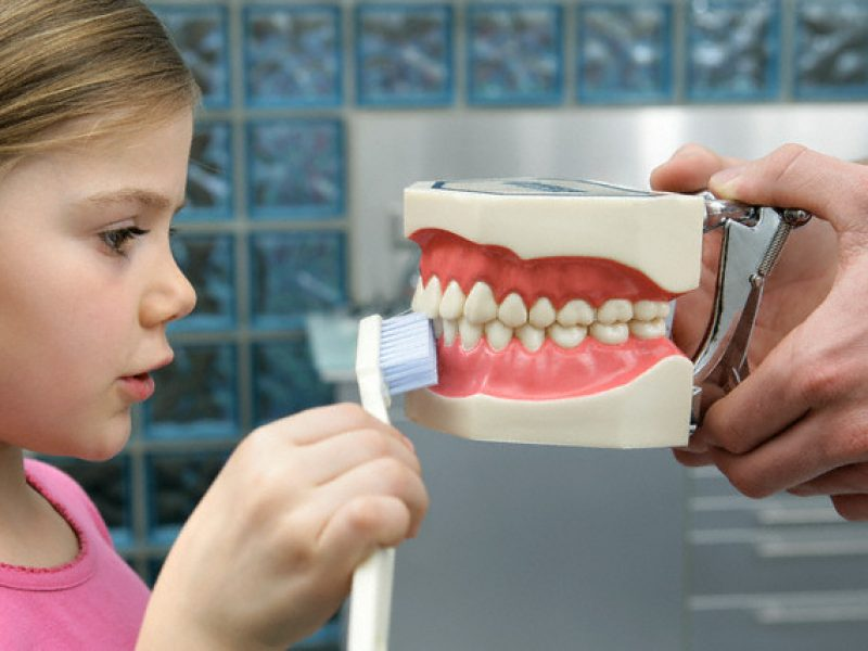 articulador dental odontopediatria dentista